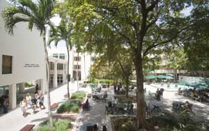 University Of Miami School Of Law Openjurist